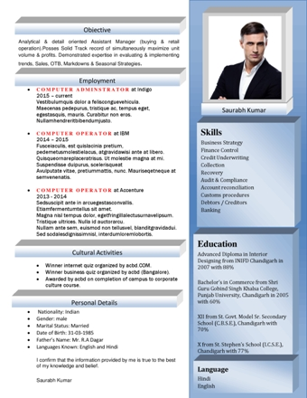Ceo Resume | Ceo Cv | Ceo Resume Samples | Ceo Resume Sample