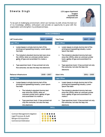 Enter Your Details  Ceo Resume Template